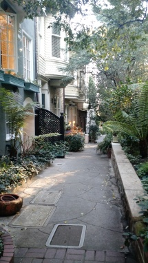 Macondray Lane San Francisco